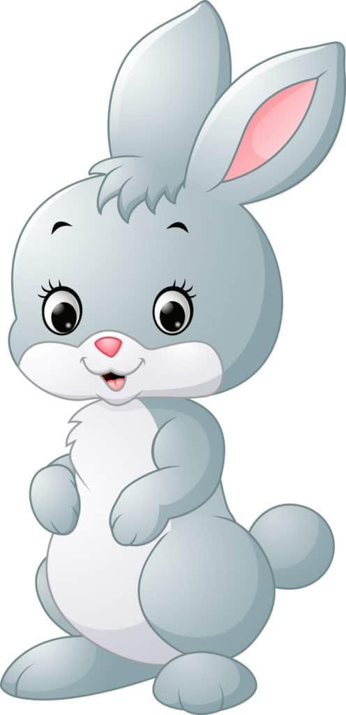 Rabbit Cartoon 1