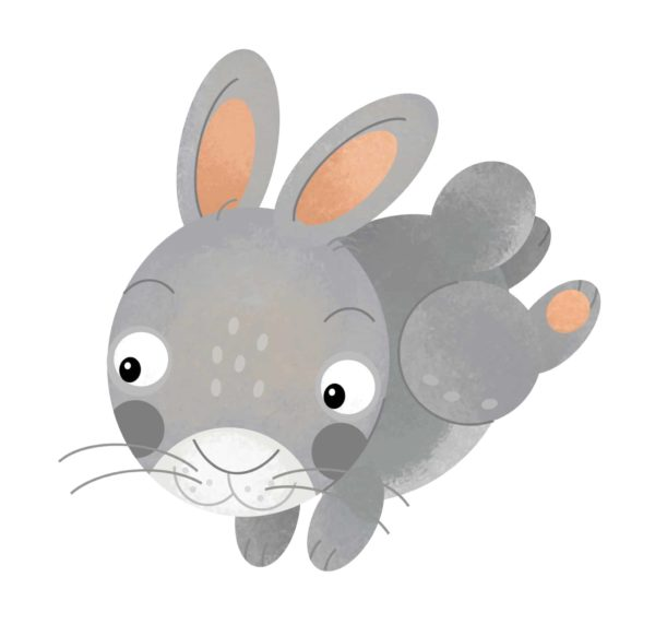 Rabbit Cartoon 2