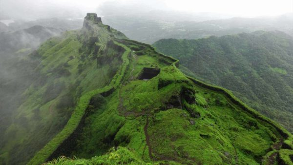 The Hills are Alive with Green