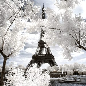 Eiffel Tower landscape photography canvas and framed wall art