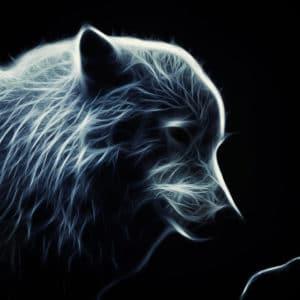 Glowing Artic Wolf surreal digital wall art prints