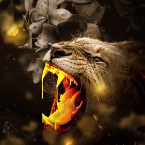 Gold Lion surreal digital wall art prints