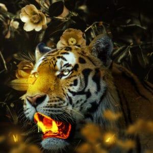 Gold Tiger surreal digital wall art prints