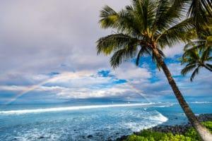 Hawaiian Landscape landscape photography canvas and framed wall art