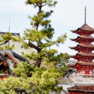 Miyajima Pagoda landscape photography canvas and framed wall art