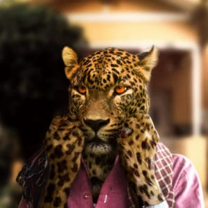 Leopard new guise surreal digital wall art prints
