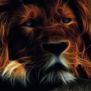 Lighting Lion surreal digital wall art prints