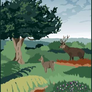 New Forest rustic digital canvas wall art print