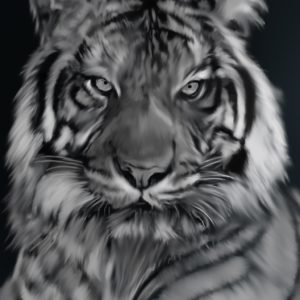 The Tiger abstract framed wall art