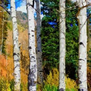 hillside aspen grove abstract framed wall art canvas prints